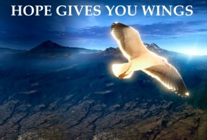 Hope Gives You Wings